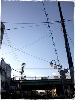 20101011_1539_Yoyogihachiman.jpg