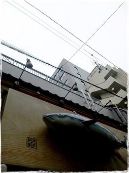 20101020_1115_Kawasaki.jpg