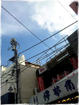 20101023_1449_Kashiwa.jpg