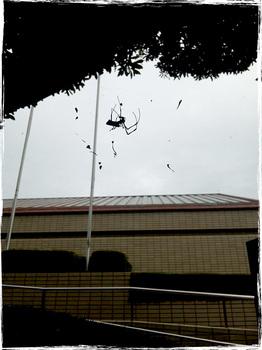 20101029_1313_Shizuoka.jpg
